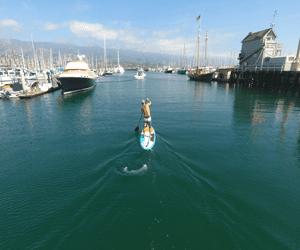 santa barbara harbor info paddle board
