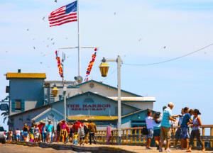 santa barbara harbor information sterns wharf